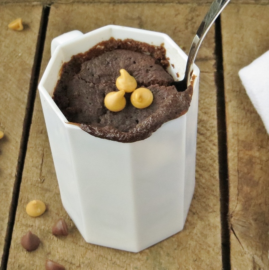 Healthy Brownie in a Mug (Under 300 calories) - A sweet indulgence when those late-night munchies hit, that won't derail your diet!