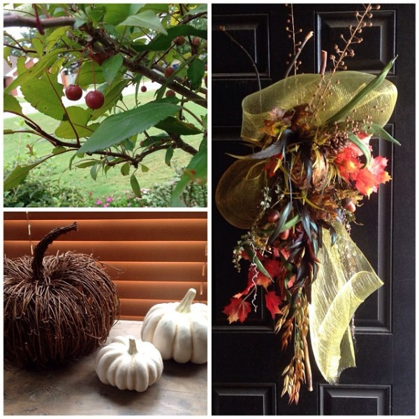 """The """"Be Good In October"""" Challenge - Pretty/Hungry Blog"""
